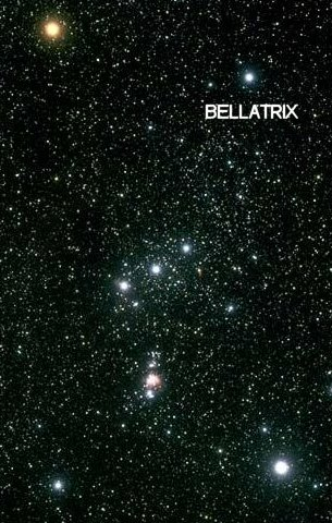 constellation of Orion with Bellatrix labeled