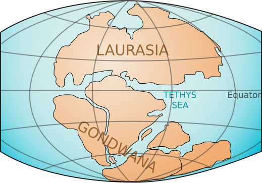 Laurasia and Gondwanaland during the Triassic, about 200 million years ago