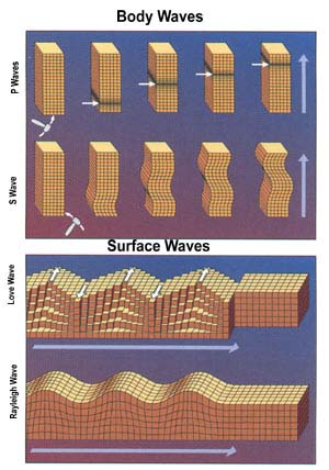body waves and surface waves