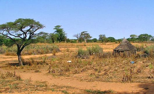 desertification in the Sahel