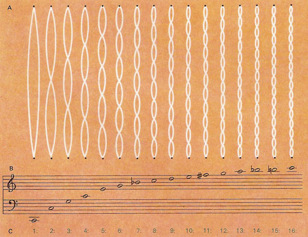 The first 16 modes of harmonic vibration in a stretched string