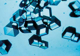 insulin crystals grown in space