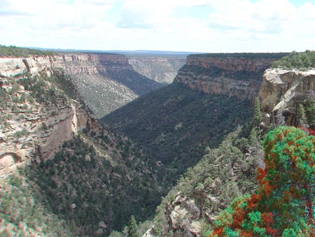 Canyon and mesas in Mesa Verde National Park