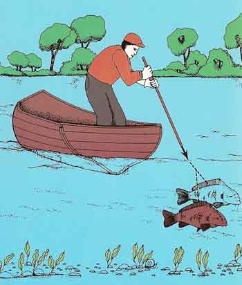 the effect of refraction when spear fishing