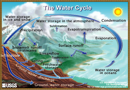 watercycle.jpg