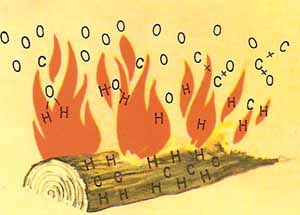 Wood burns because the carbon and hydrogen that are its principal components combine with the oxygen in the air