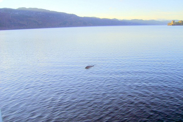 Photo taken by George Edwards in 2012 of an object in Loch Ness near Urquhart Castle