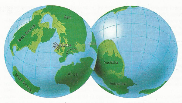 Earth's land masses during thePaleocene
