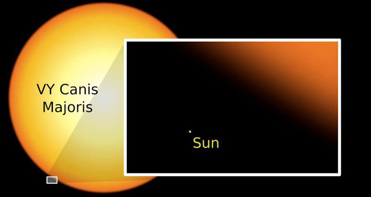 Comparison of the sizes of VY Canis Majoris and the Sun