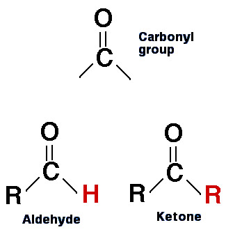 aldehyde and ketone compared