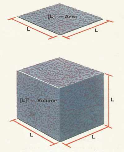 Dimensions of area and volume