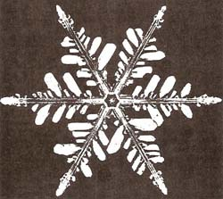 The symmetry of a snowflake echoes the symmetry of its molecules but owes its elaborate perfection to the subtle process of crystal growth by vapor-deposition on a vibrating surface