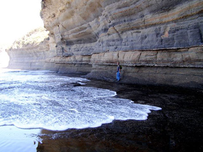 Rock strata near Depot Beach, New South Wales Photo: D.M. Vernon