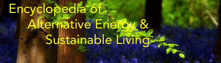 Encyclopedia of Alternative Energy