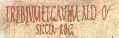 The outside walls of both private and public buildings in Pompeii bear a surprising variety of writing,