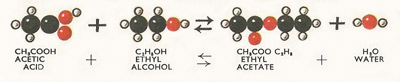 reaction between acetic acid and water