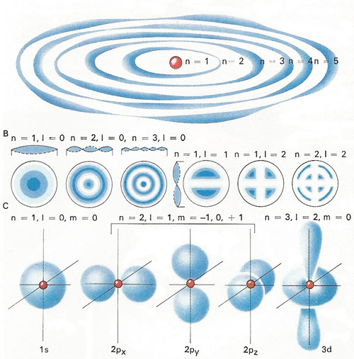 Possible orbits of an electron around an atomic nucleus can be pictured [A] as circles that exactly accommodate a whole number of wavelengths, denoted by the principal quantum number n.  A two-dimensional analogy (a vibrating drum skin) is described by two quantum numbers n and l [B], and the shape of a real atom [C] in terms of three, (n, l and m).