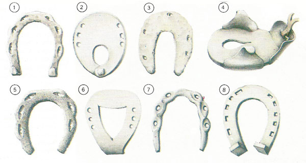 The History of Horseshoes