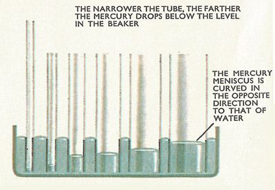 The level of mercury in tubes