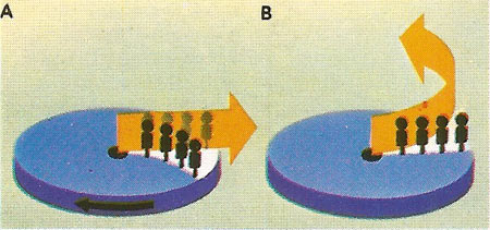 A ray of light passing a rotating wheel bearing a line of people would appear to be straight to an outside non-rotating observer [A]. As it passes, the people are carried away from it by the movement of the wheel. To them the ray appears to bend [B]. This analogy shows that light bends in an accelerating system and therefore, by equivalence, in a gravitational field