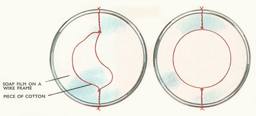 If the part of the soap film inside the cotton loop is burst, surface tension pulls the loop equally in all directions, so that it forms a circle.