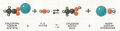 reaction between sodium acetate and water