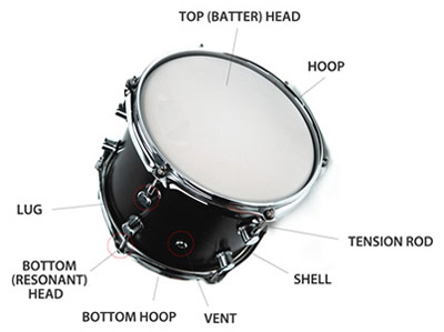 anatomy of a drum