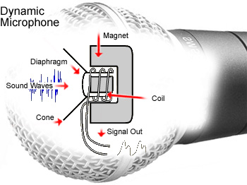 dynamic microphone rh daviddarling info