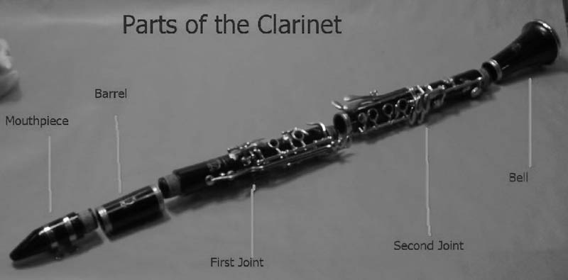 Lovely Parts Of A Clarinet